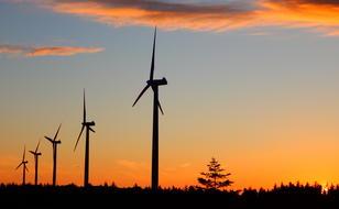 Vindmøller i solnedgang